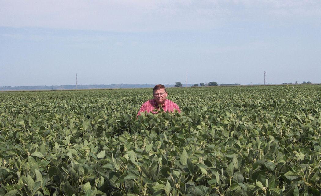 Salesman Gene standing in our soybean field. They yielded 100bu./A