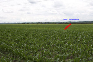 Blair Nebraska Crop Responses